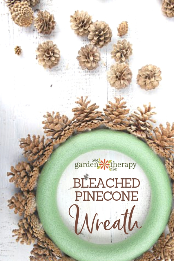 Bleached Pincone Wreath DIY. Making a bleached pinecone wreath using a foam form.