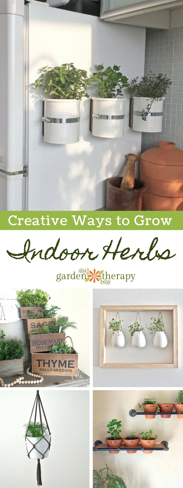 Creative Ways to Grow Indoor Herbs in Any Space