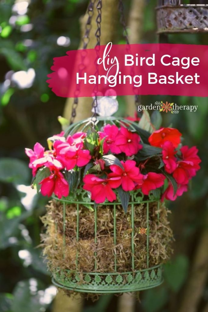 Pretty Up the Party with Birdcage Hanging Basket Planters
