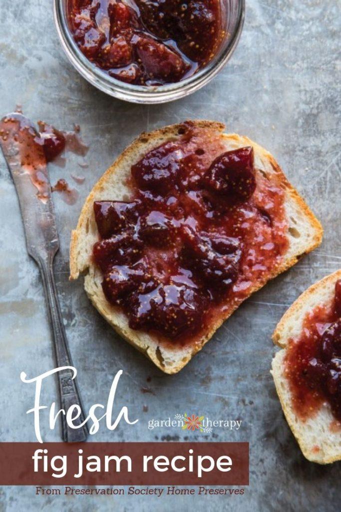 Fresh Fig Jam Recipe with Secrets