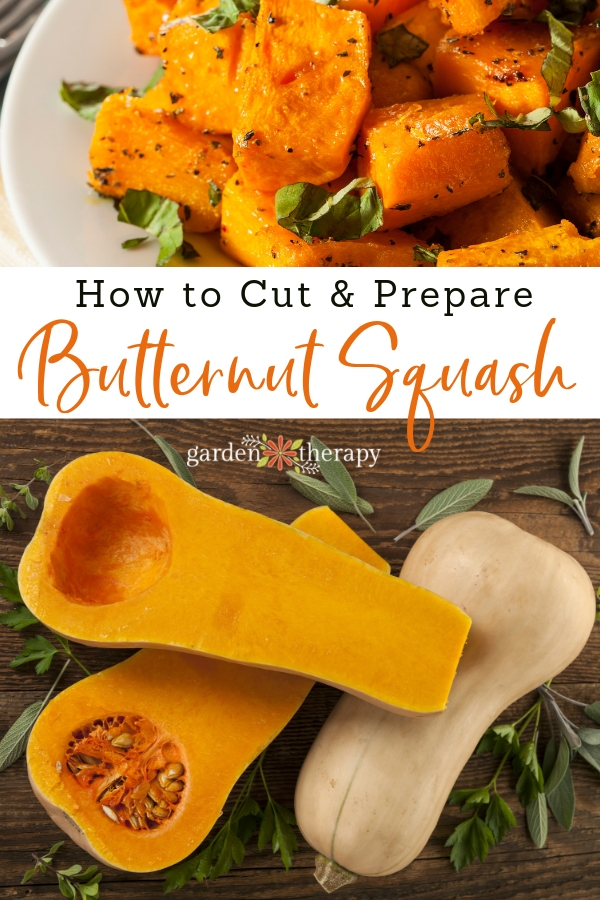 How to Cut and Prepare Butternut Squash for Recipes