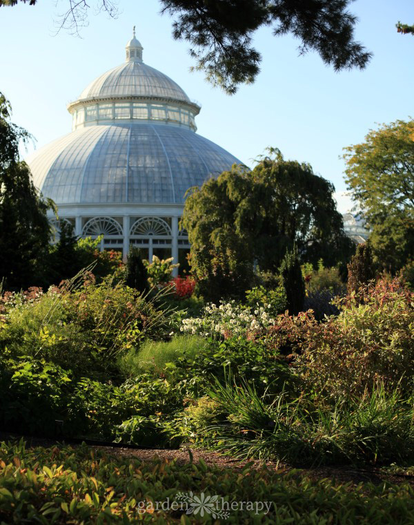 NYBG Tour Perennial Garden and Conservatory
