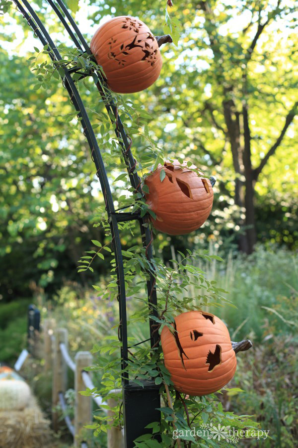 Pumpkinhead Scarecrows at NYBG
