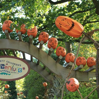 Pumpkinhead Scarecrows at the NYBG Children's Adventure Garden
