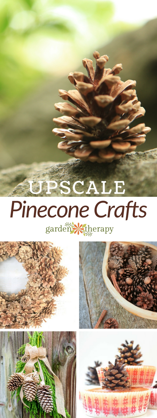 Decorate your home with pinecones