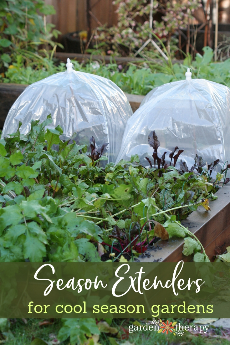 Season Extenders for Cool Season Gardens. Mini greenhouses and more for late-growing vegetables.