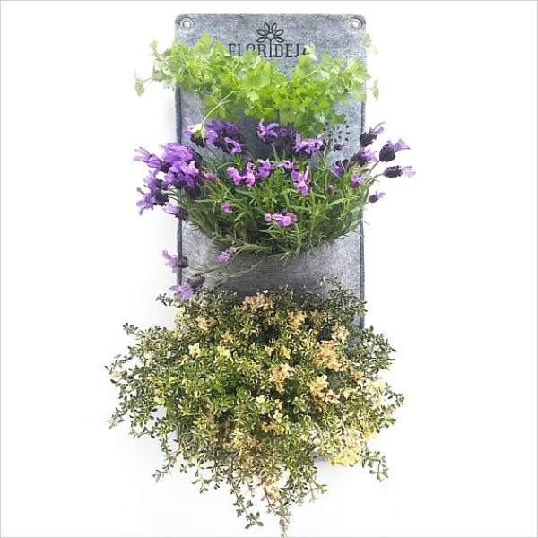 Grow herbs indoors with vertical plant pockets