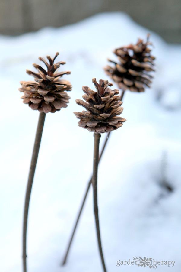 DIY pinecone planter ornaments for winter