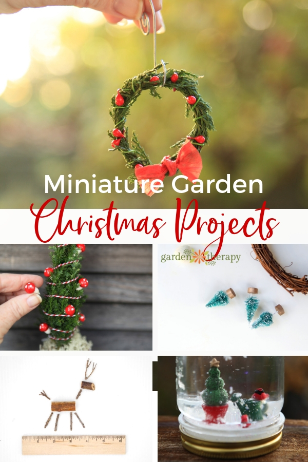 Miniature Garden Christmas Projects