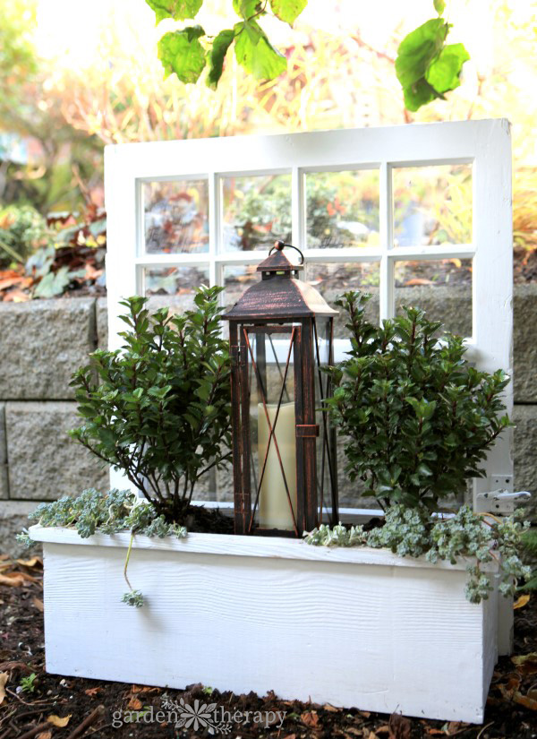 how to design and plant a window box for winter