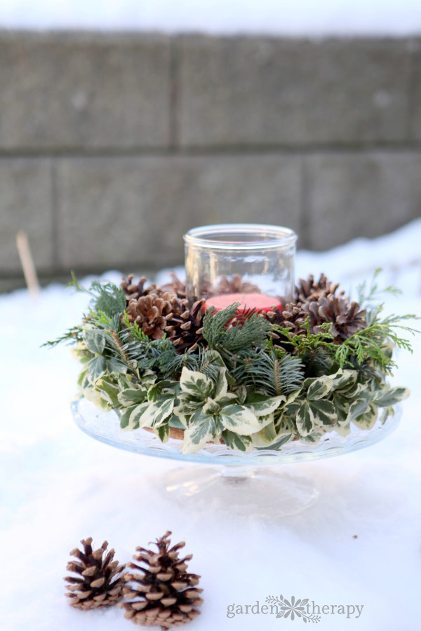 Make this super simple Christmas centerpiece with natural elements from the backyard!