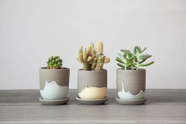 Garden-Inspired Gifts: Stoneware Pots