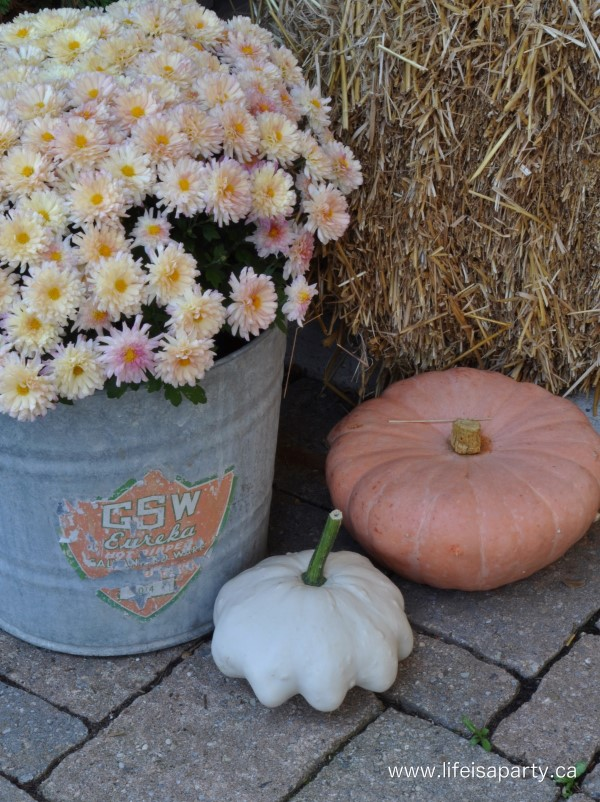 Fall mum diplay from Life is a Party