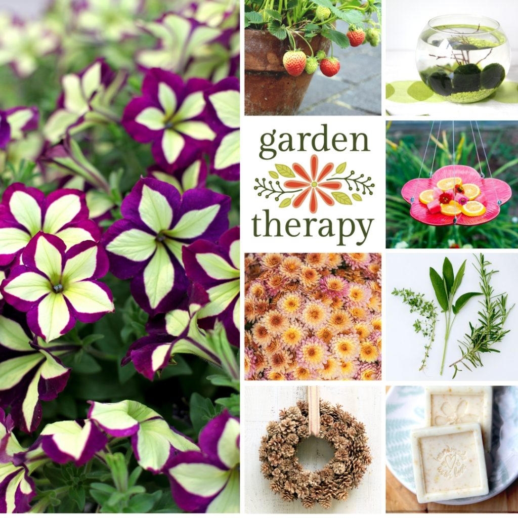Garden Therapy 2017
