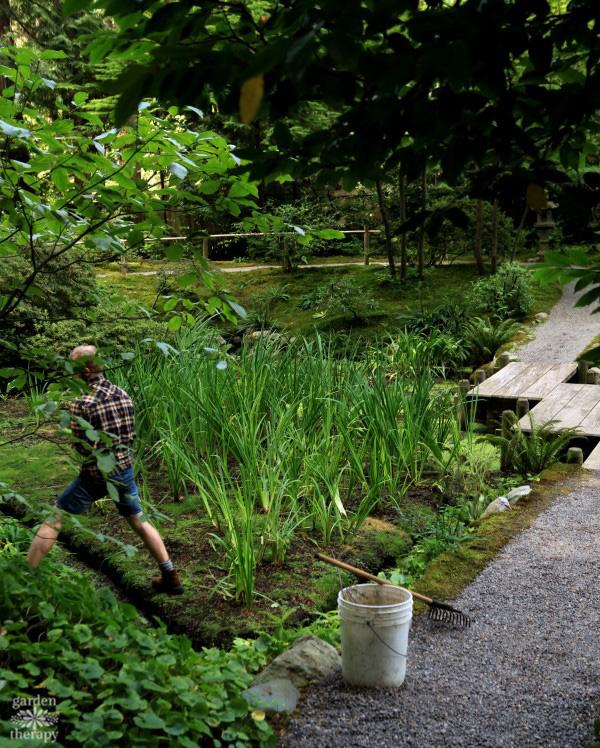 maintaining a Japanese garden