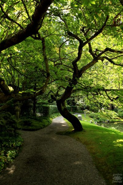 Tour one of the Top Japanese Gardens in North America