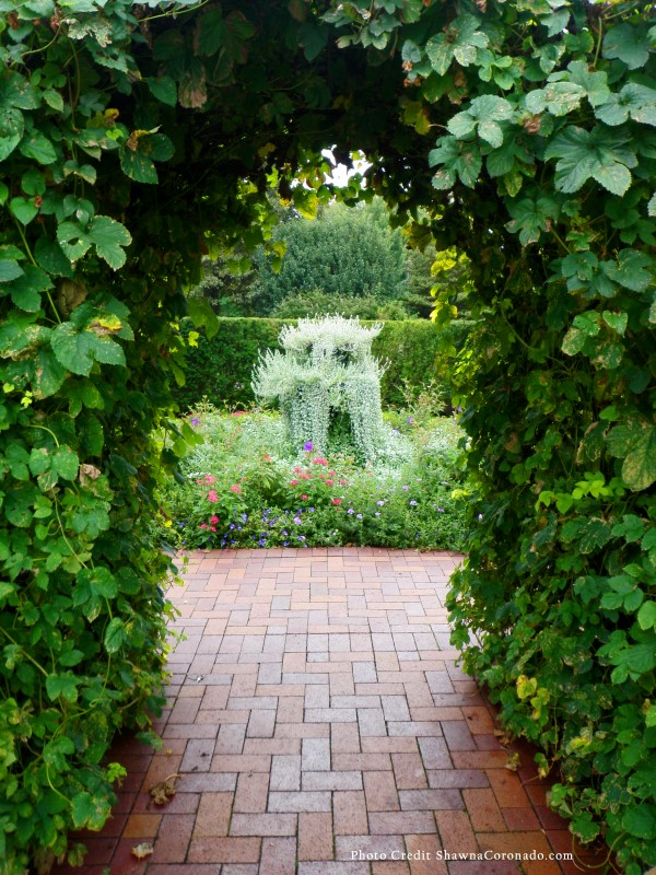 Step into a wellness garden