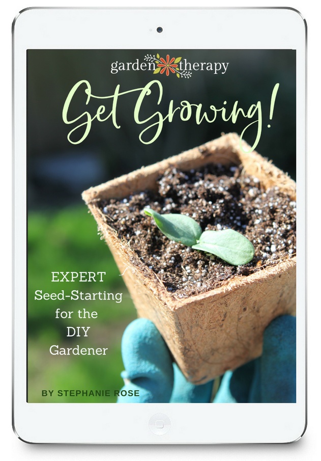 Get Growing! Seed Starting eBook