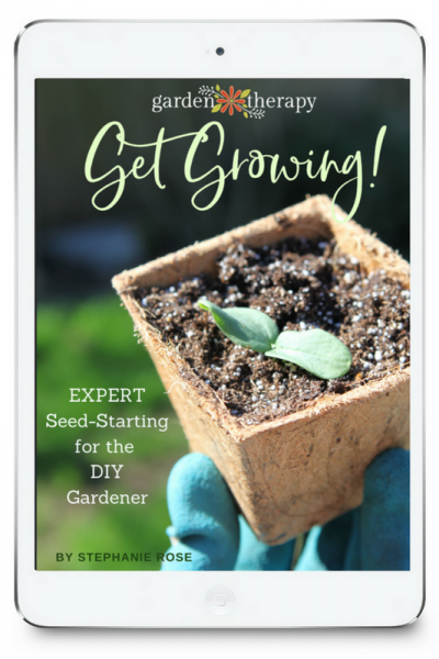 Get Growing! Expert Seed-Starting for the DIY Gardener