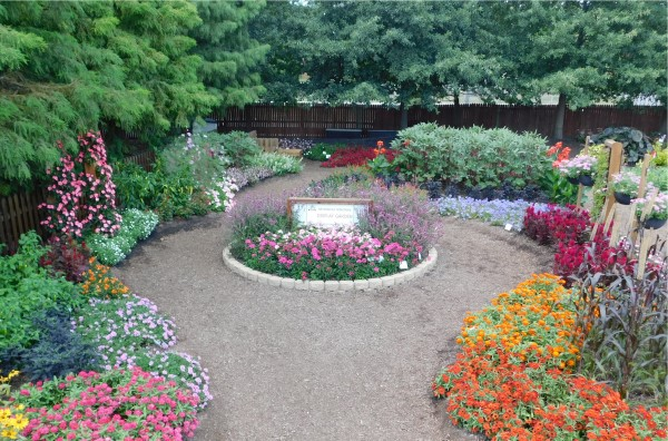 Circular garden blooming with purple flowers surrounded by a round path with colorful flowers on the outer edges
