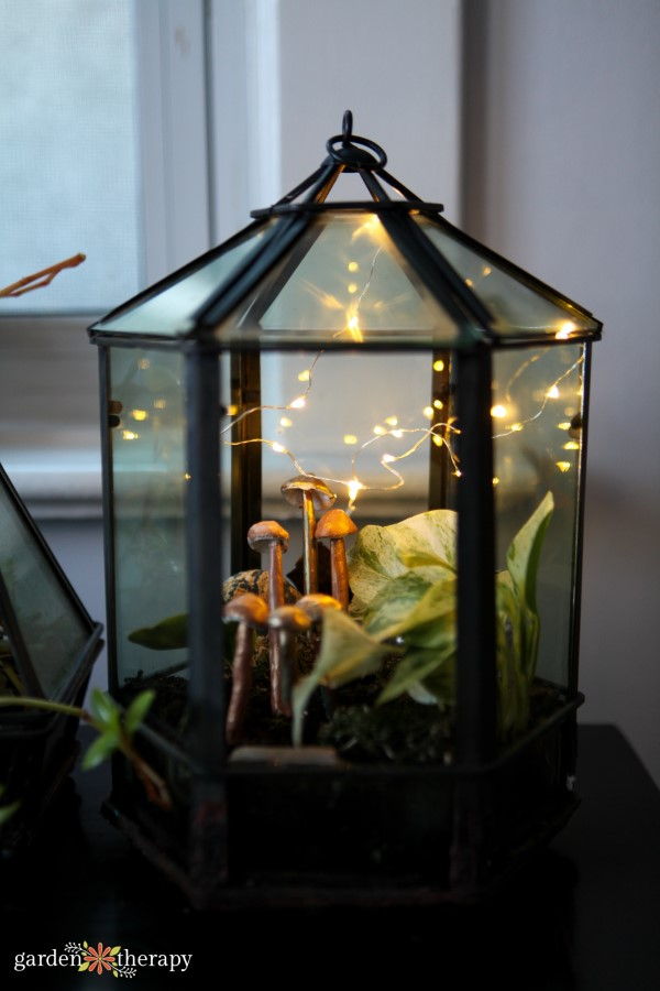 Glass terrarium planted with tropical plants and decorated with fairy lights and clay mushrooms