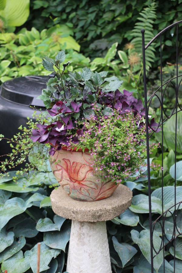 Small pot with abstract red design planted with purple flowers and foliage and placed on a concrete pedestal outdoors.