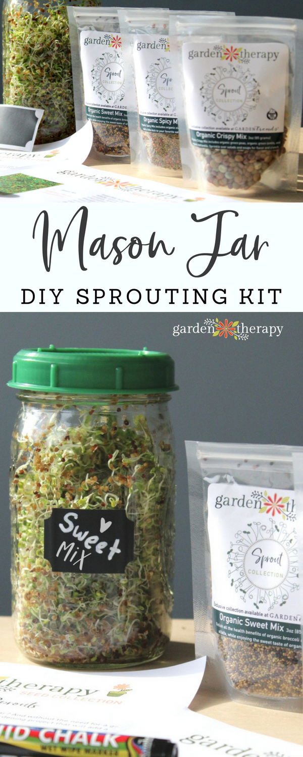 "Collage image of a glass jar full of sprouts labelled ""Sweet Mix"" and three plastic packages full of seeds with text overlay ""Mason Jar Sprouting DIY Kit"""