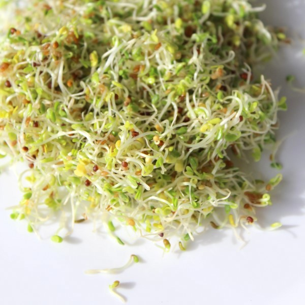 Close-up image of sprouts on a white surface.