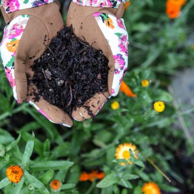 Soil Food: The Best Dirt Cheap Organic Soil Amendments