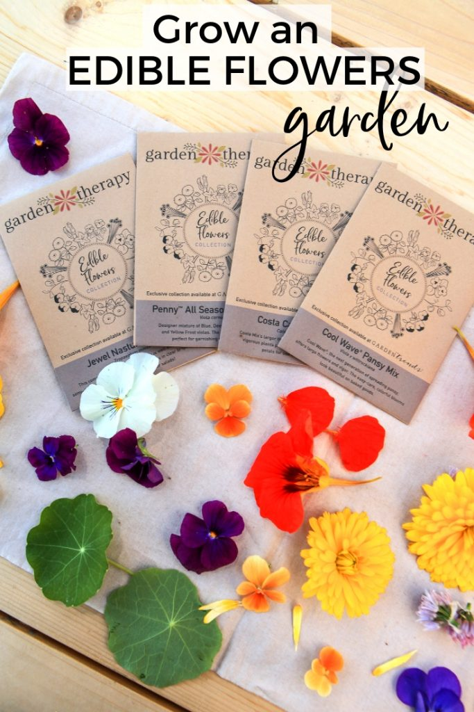 Grow an EDIBLE FLOWERS Garden from seed