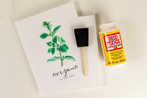 Herb prints supplies: printable, Mod Podge, and a sponge brush