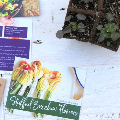 Plant an All-Season Edible Flower Garden with this All-in-One Kit