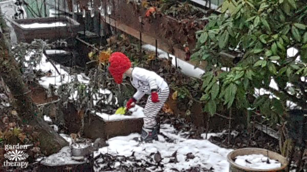 Kids love to garden, even in winter