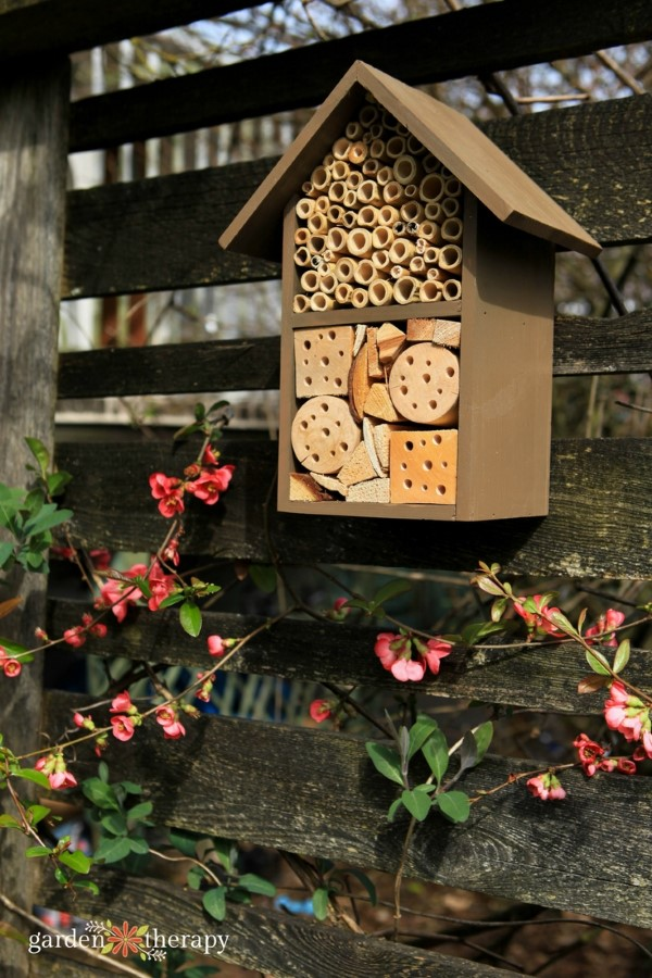 Patio Pollinators Seed Kit Bug Hotel Garden Therapy
