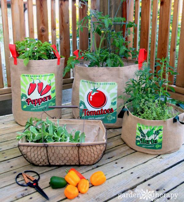 growing vegetables in burlap bags