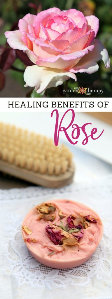 Healing Benefits of Rose for Beauty Products