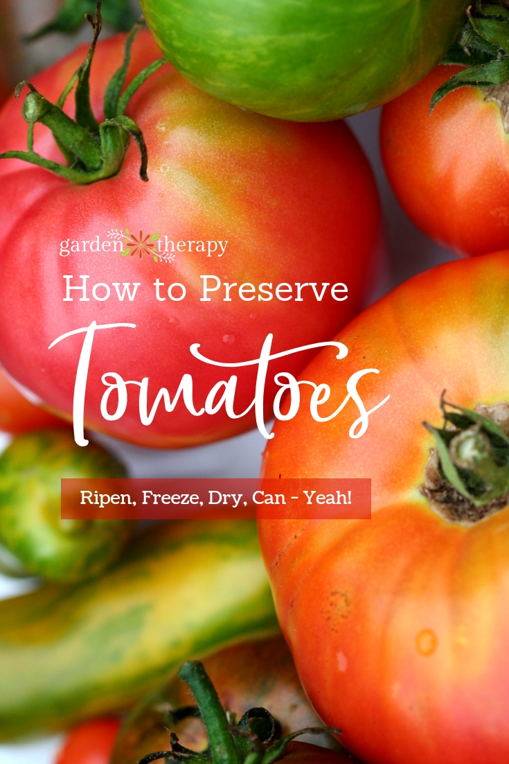 "Garden tomatoes with copy ""How to Preserve Tomatoes: Ripen, Freeze, Dry, Can - Yeah!"""