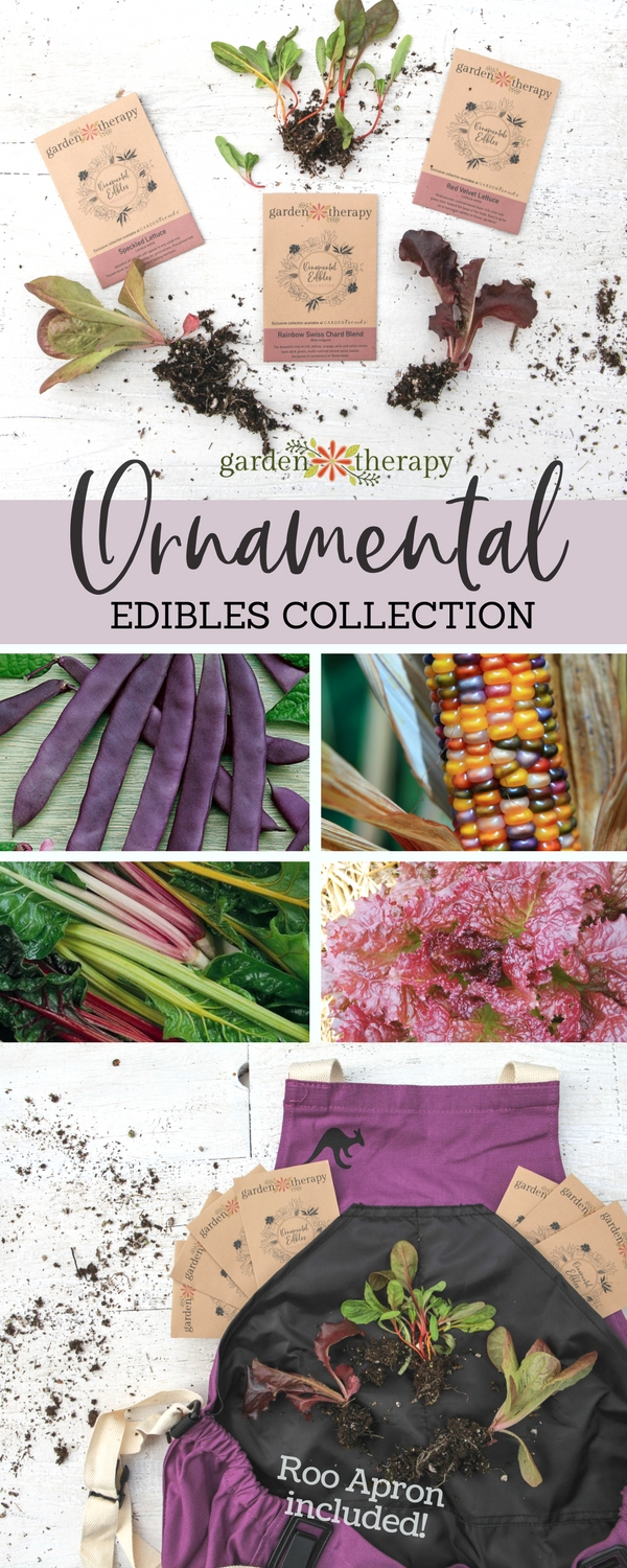 Grow an Ornamental Edibles Garden