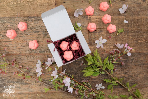 Packaged Cherry Blossom Sakura Soap