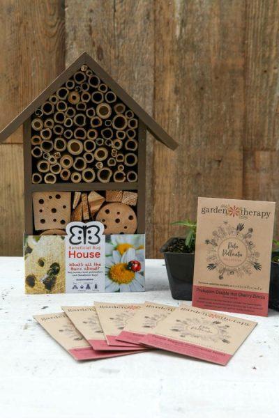 Patio Pollinators Seed Kit + Bug Hotel