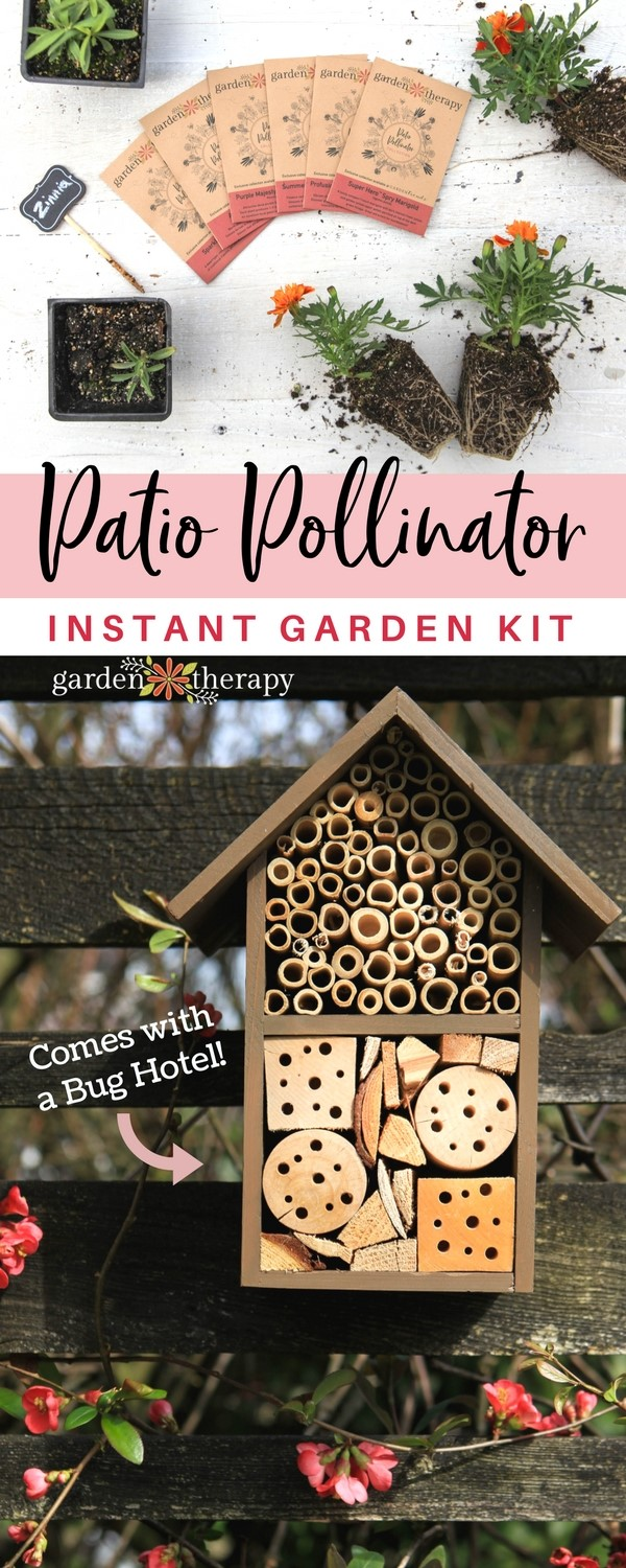 Patio Pollinator Instant Garden Kit