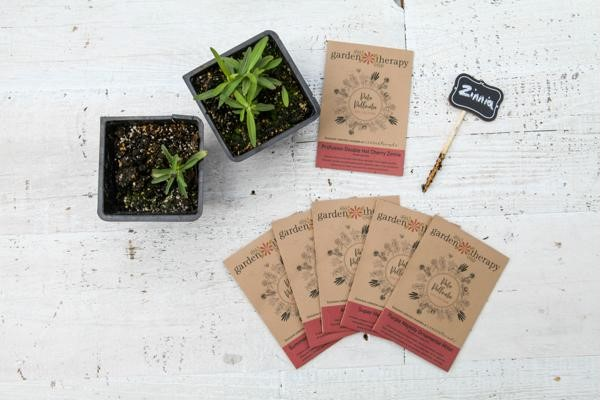 Patio Pollinator seed collection