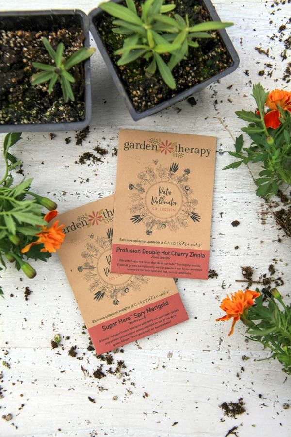 The Patio Pollinator seeds attract bees, butterflies, moths, hummingbirds, and more
