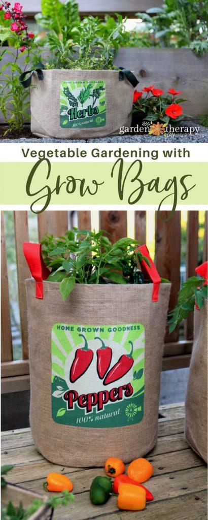 Growing vegetables in bags
