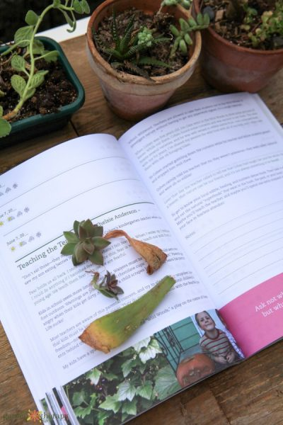 How to Start Keeping a Garden Journal (and Why You'll Thank Me)