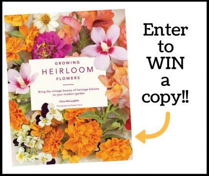 enter to win a copy of Growing Heirloom Flowers