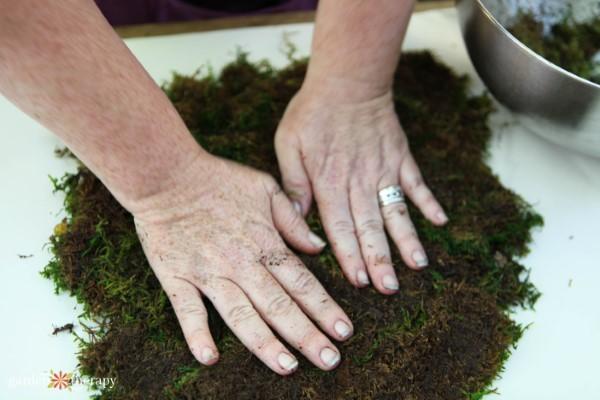 preparing moss