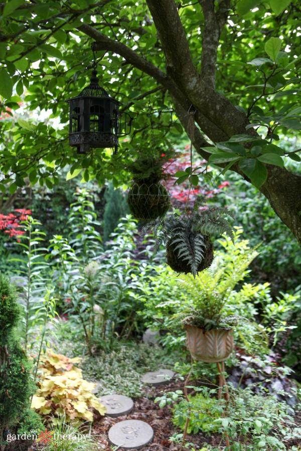 kokedama hanging in my garden
