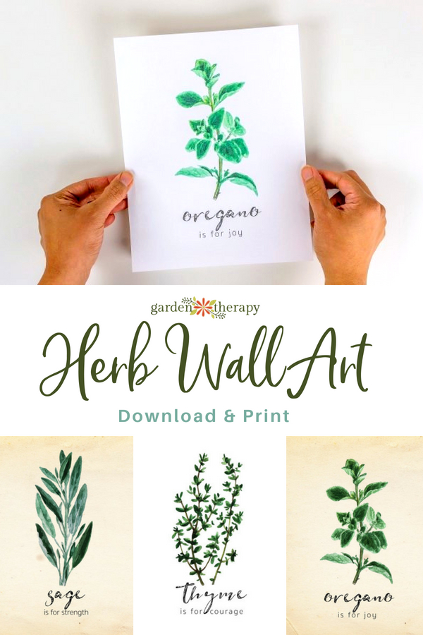 herb wall art to download and print
