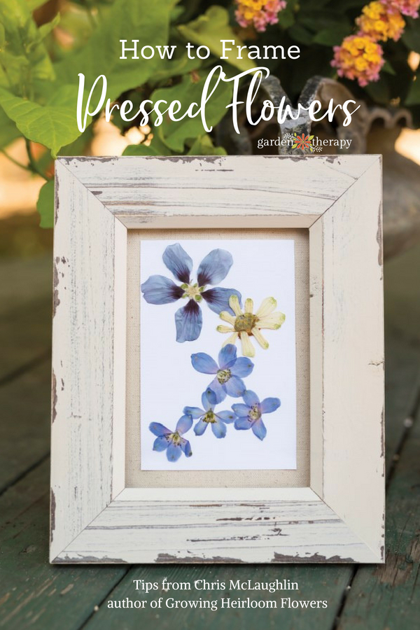 These Blooms Never Fade How To Frame Pressed Flowers Garden Therapy